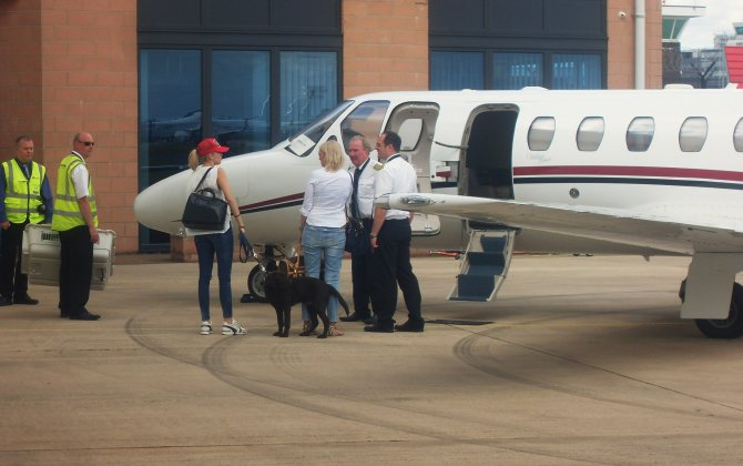 Pets on jets: caring for yourself and your furry friend