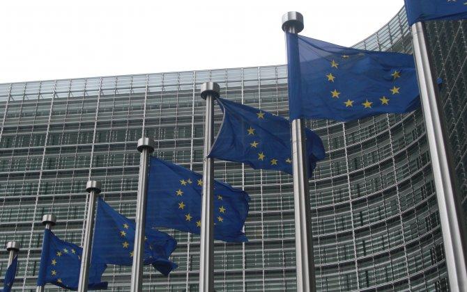 EU to Challenge Germany over Pilot Licensing After Germanwings Crash - Source