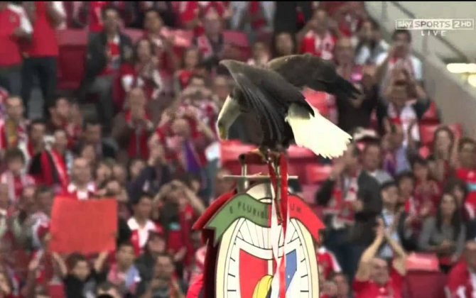 Great idea -Benfica Safety video | Emirates