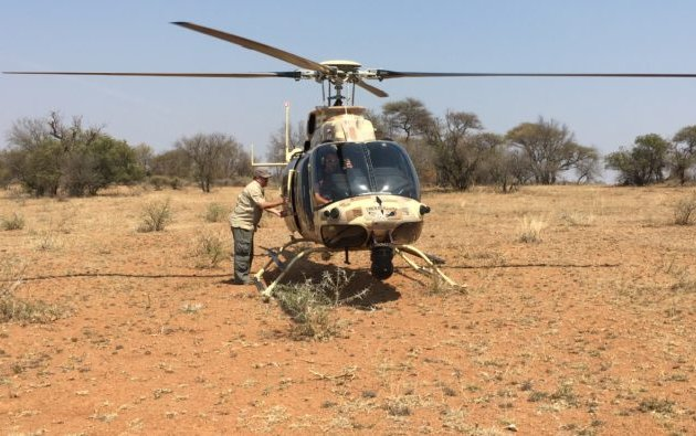Bell 407GT Helicopter used to tackle Rhino Poachers in South Africa