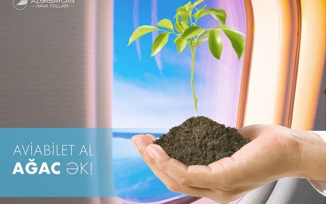 Buy AZAL flight ticket - plant a tree!