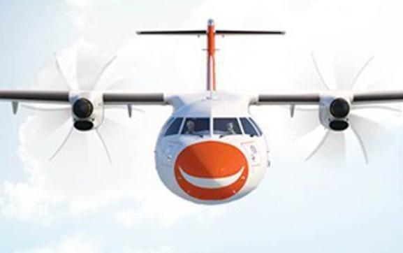 DGCA sacks flight safety chief of Air Pegasus, suspends 5 pilots