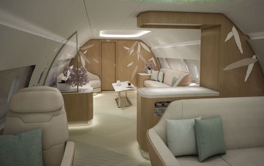 "East meets West: VIP aircraft cabin concept ""Nature's Touch"""