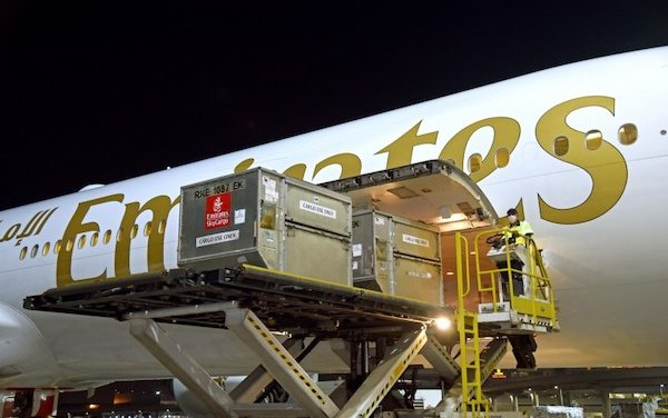 Emirates SkyCargo transports first batch of COVID-19 vaccines for Dubai Health Authority