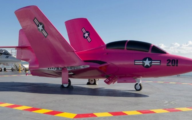 Pretty in pink: Navy fighter jet painted for Breast Cancer Awareness month
