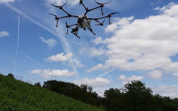 Vineyards in Luxembourg are safe with drone pilot project